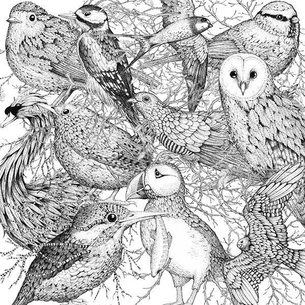 Bird Ink