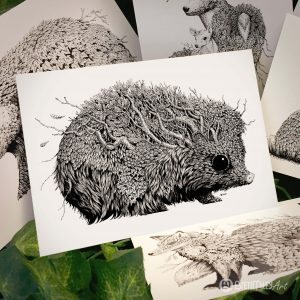 Leaf Hedgehog Postcard - Brett Miley Art