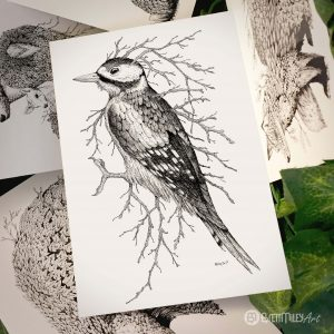 Leaf Woodpecker Postcard - Brett Miley Art