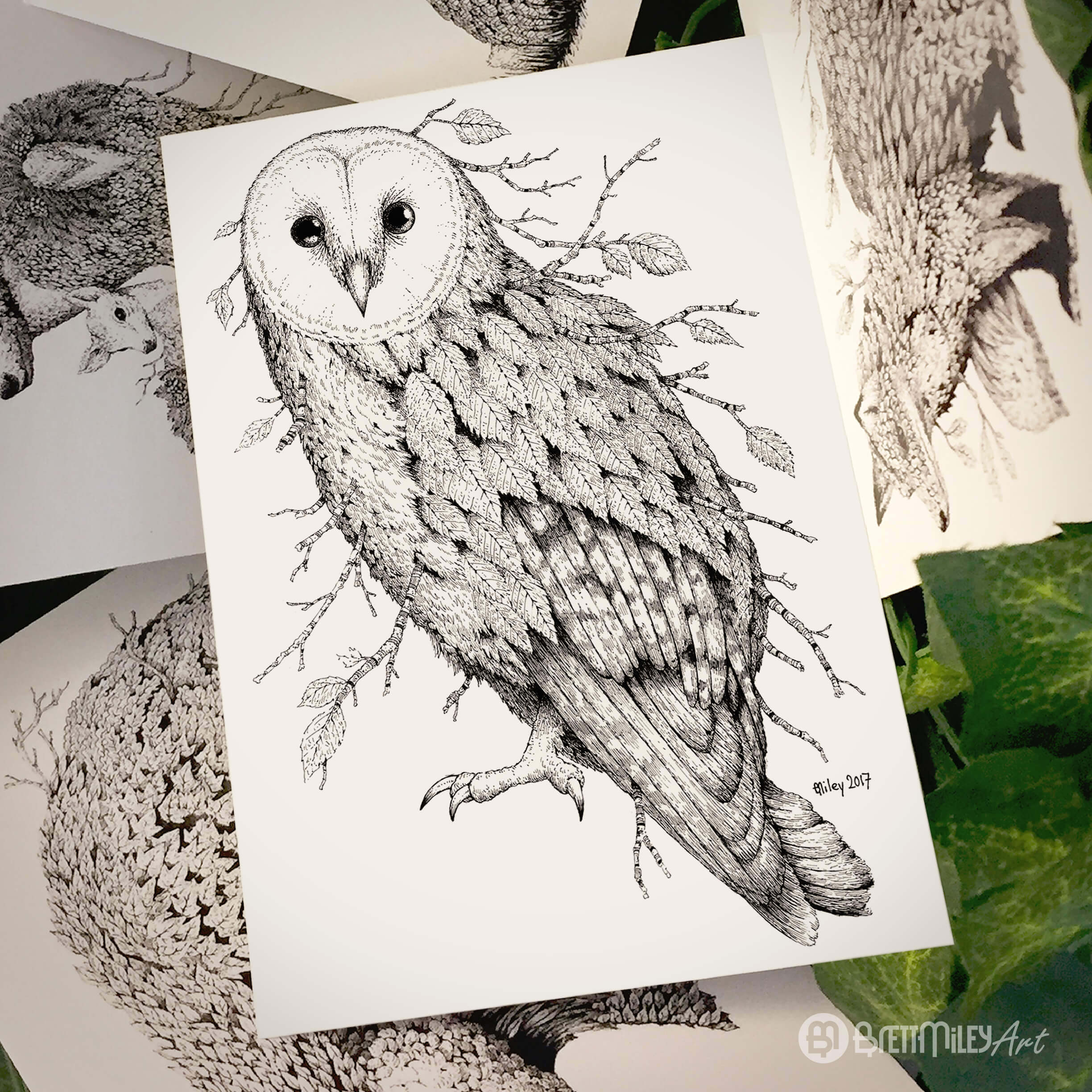 Leaf Barn Owl Postcard - Brett Miley Art
