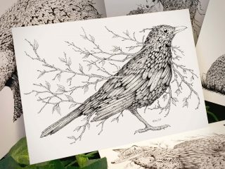 Leaf Blackbird Postcard - Brett Miley Art
