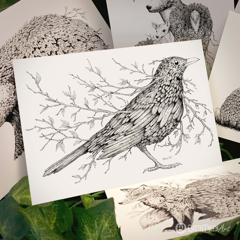 Leaf Blackbird Postcard - Brett Miley Art