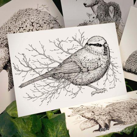 Leaf Blue Tit Postcard - Brett Miley Art