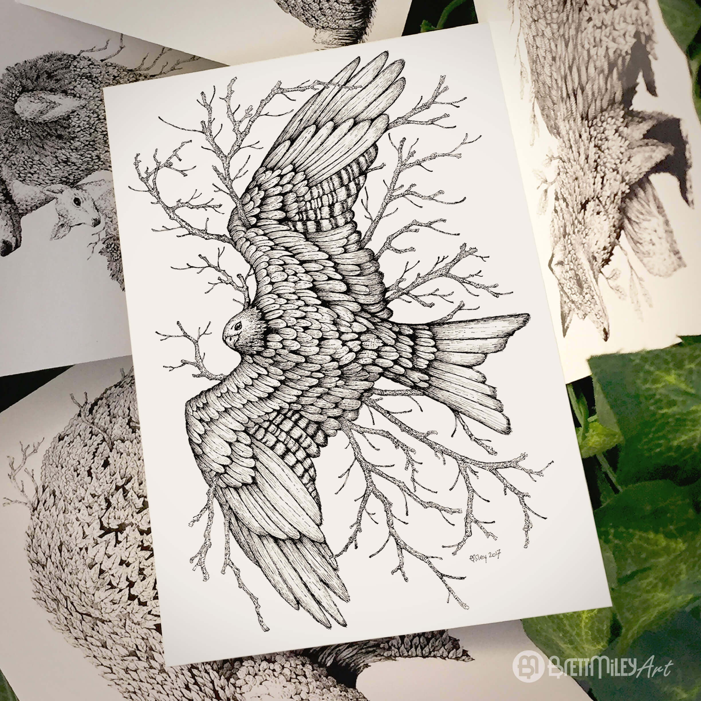 Leaf Red kite Postcard - Brett Miley Art