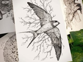 Leaf Swallow Postcard - Brett Miley Art