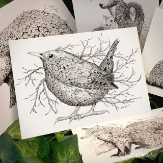 Leaf Wren Postcard - Brett Miley Art
