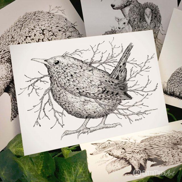 Leaf Wren Postcard - Brett Miley Art