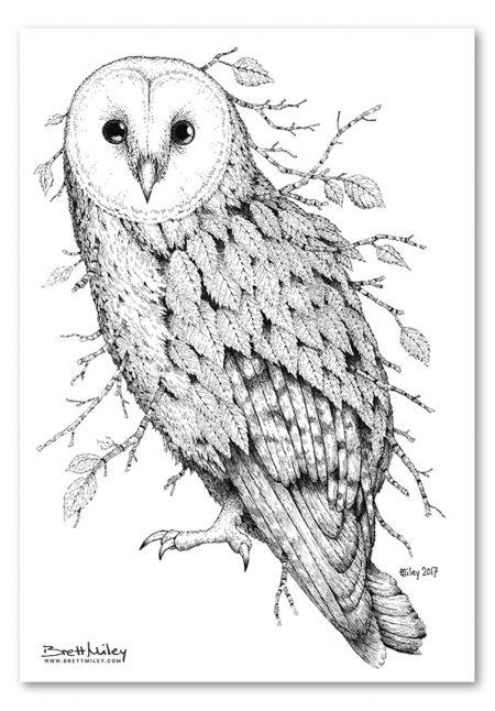Leaf Barn Owl Print - Brett Miley Art