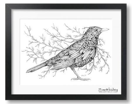 Leaf Blackbird Framed Original - By Brett Miley Art