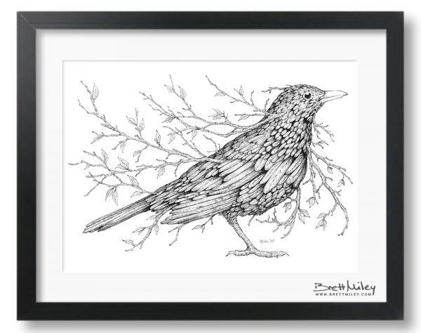 Leaf Blackbird Framed Original - By Brett Miley Art