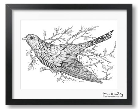 Leaf Cuckoo Framed Original - by Brett Miley Art