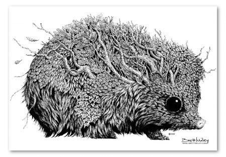 Leaf Hedgehog Print - Brett Miley Art