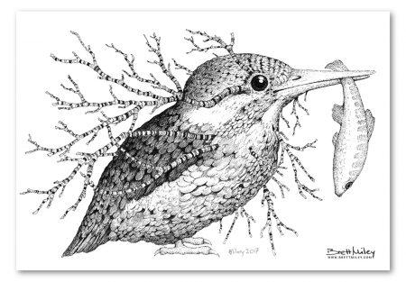 Leaf Kingfisher Print - Brett Miley Art