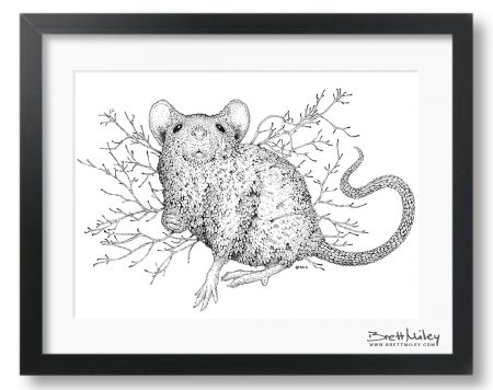 Leaf Mouse Framed Original - by Brett Miley Art