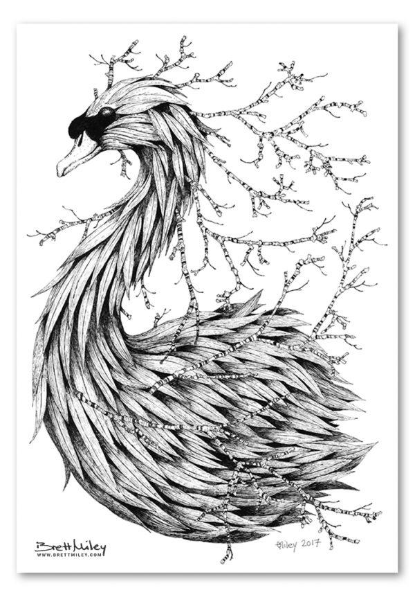 Leaf Mute Swan Print - Brett Miley Art