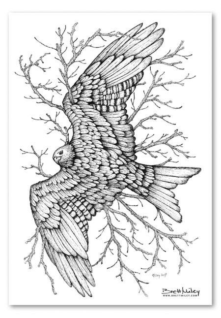 Leaf Red kite Print - Brett Miley Art