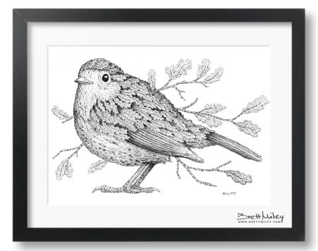 Leaf Robin Framed Original - by Brett Miley Art