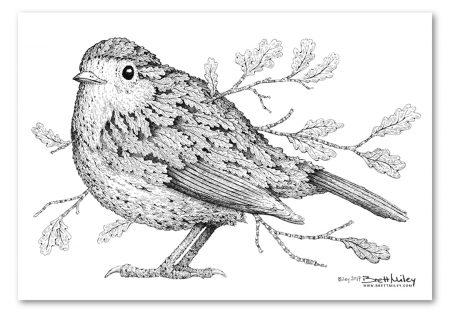 Leaf Robin Print - Brett Miley Art