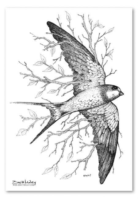 Leaf Swallow Print - Brett Miley Art