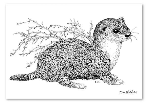 Leaf Weasel Print - Brett Miley Art