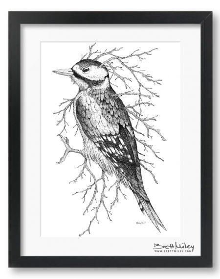 Leaf Woodpecker Framed Original - By Brett Miley