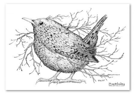 Leaf Wren Print - Brett Miley Art