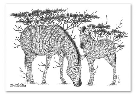 Tree Zebras Print - Brett Miley Art
