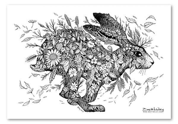 Meadow Hare Art Print by Brett Miley Art