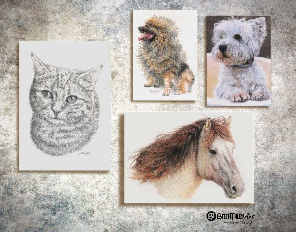 Pet Portraits Art - Brett Miley Art