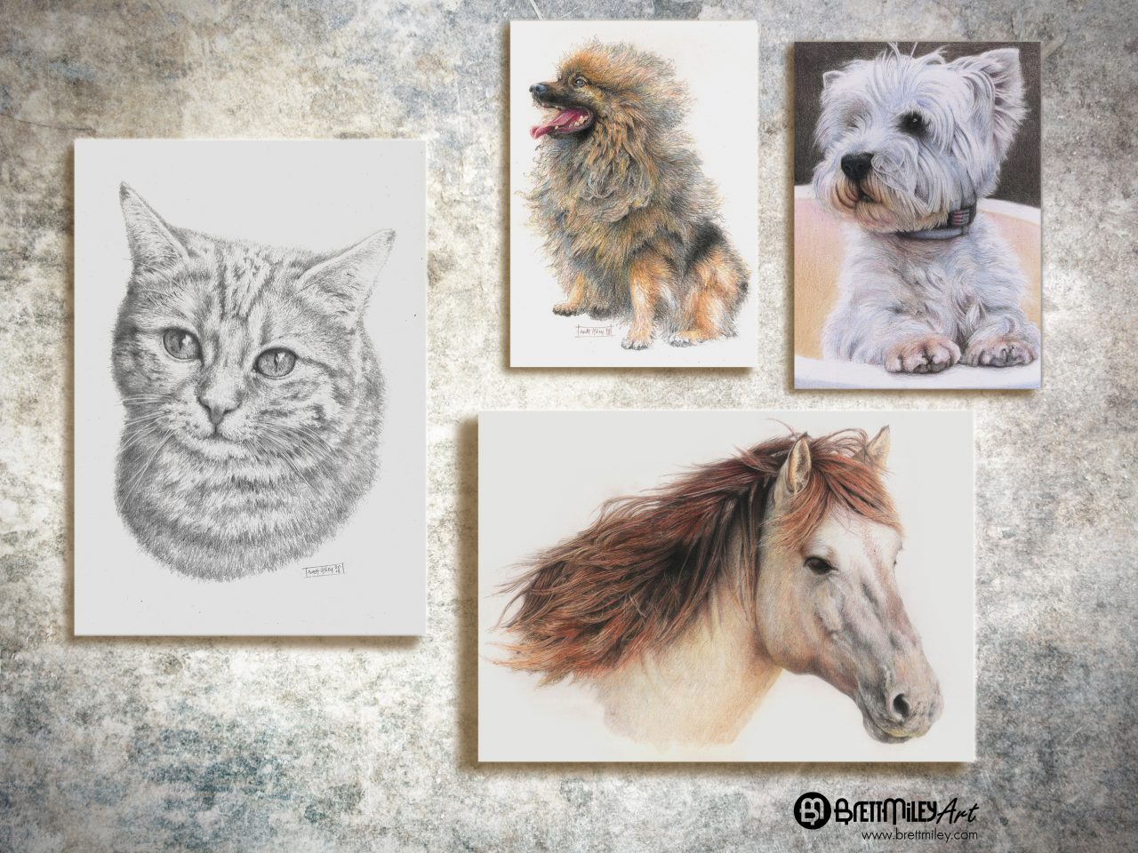 Pet Portraits Art - Brett Miley Art