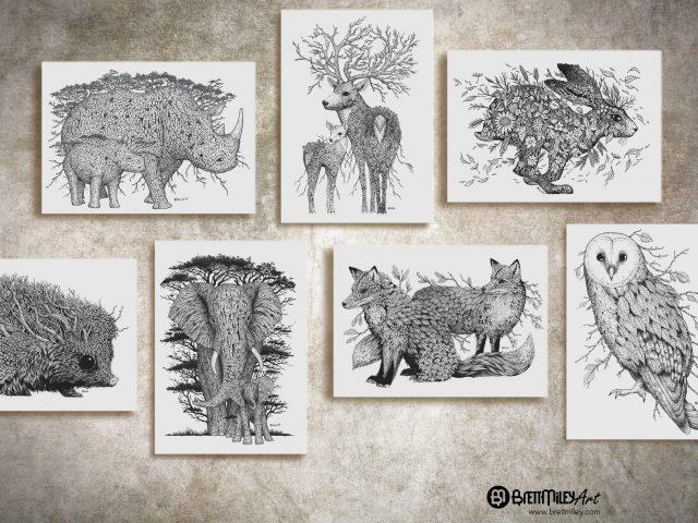 Animal And Bird Collection - Brett Miley Art