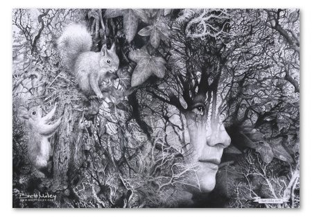 Looking Through by Brett Miley Art