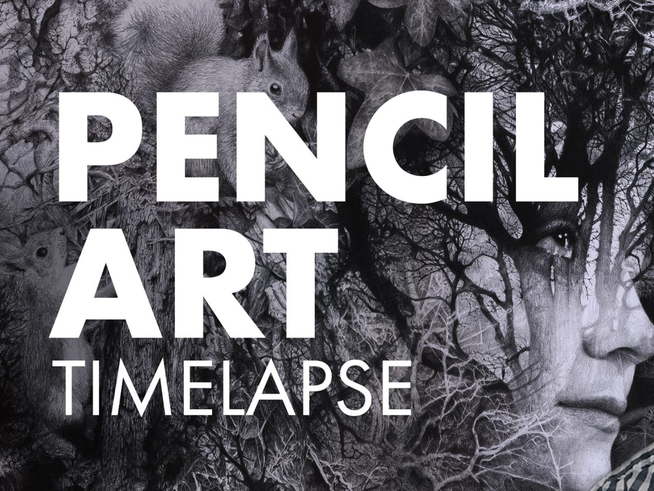 Pencil Art Timelapse Looking Through Brett MIley Art