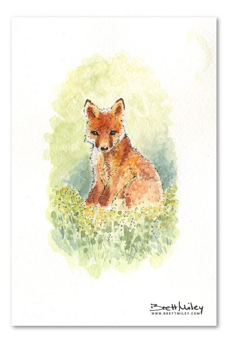 Fox Cub Watercolour Art by Brett Miley