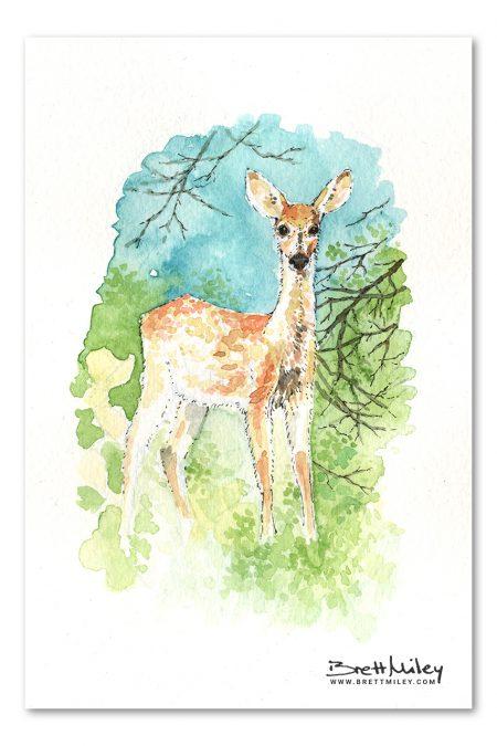 Deer Watercolour Art by Brett Miley