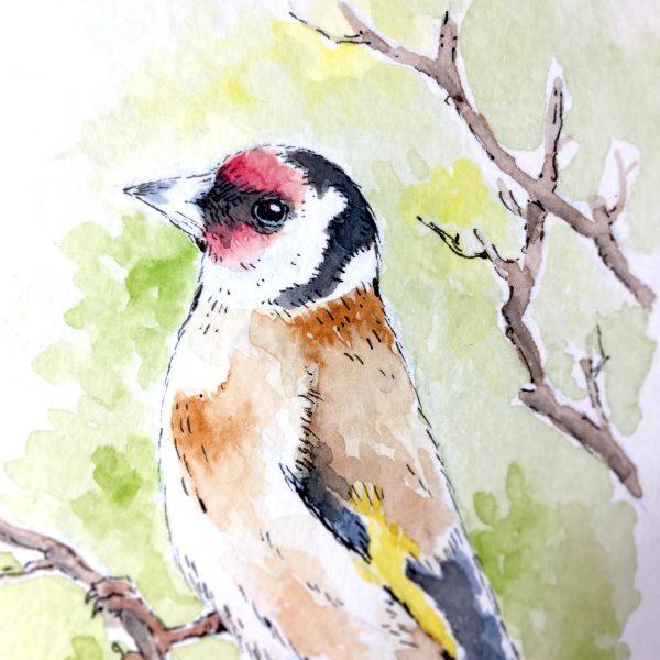 Goldfinch Watercolour Art by Brett Miley
