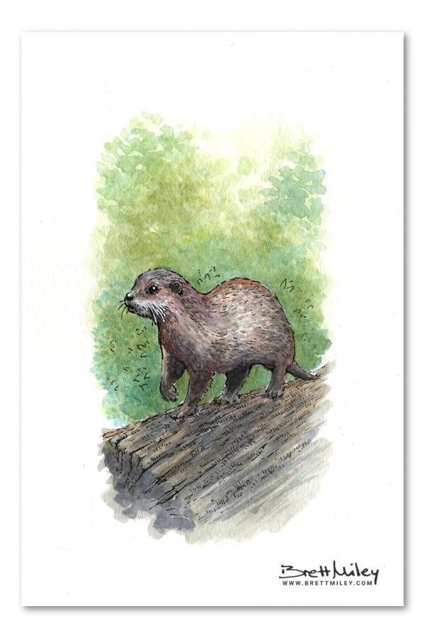Otter Watercolour Art by Brett Miley